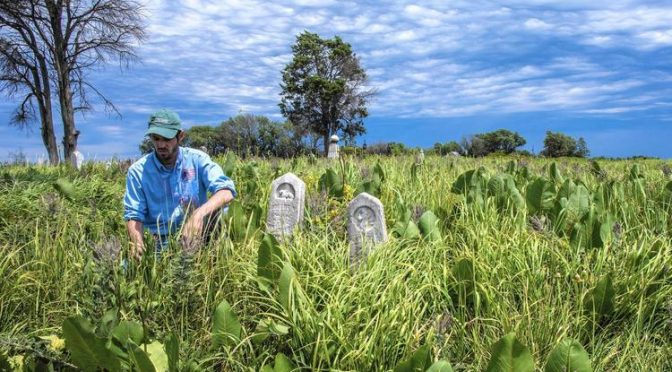 Remnant Prairies Survive In Forgotten Cemetaries