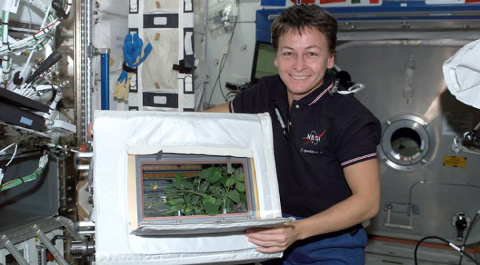 In Space, Humans Will Need Plants To Maintain Mental Health