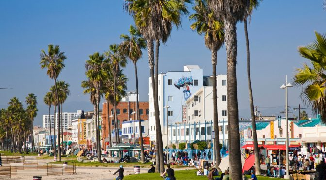 Climate Change Forces Los Angeles To Say Good-bye To Iconic Palm Trees