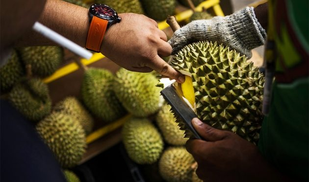 Durian's Legendary Smell Is A Brilliant Adaptation