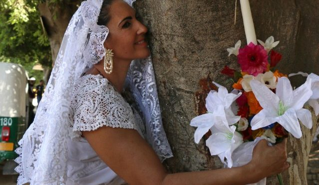 Marry A Tree To Save It From Deforestation