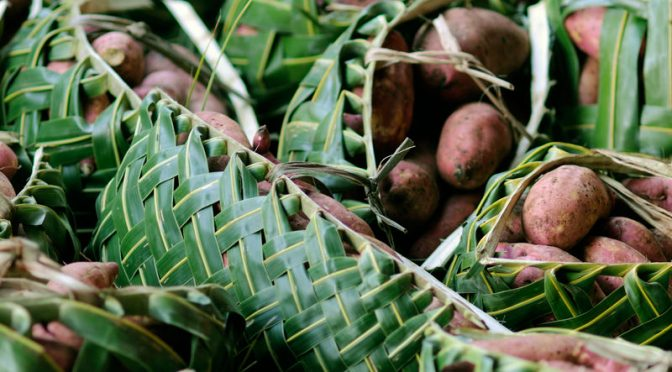 Mystery: South American Sweet Potatoes Arrived In Polynesia Before Humans Did